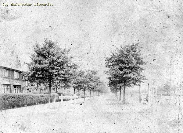 1944 - Errwood Road looking north from Shawbrook Road1.jpeg